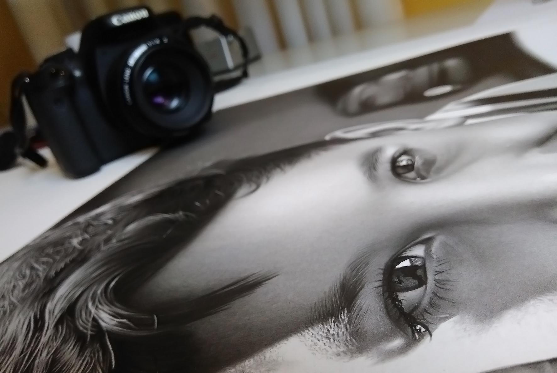 fotografar desenhos