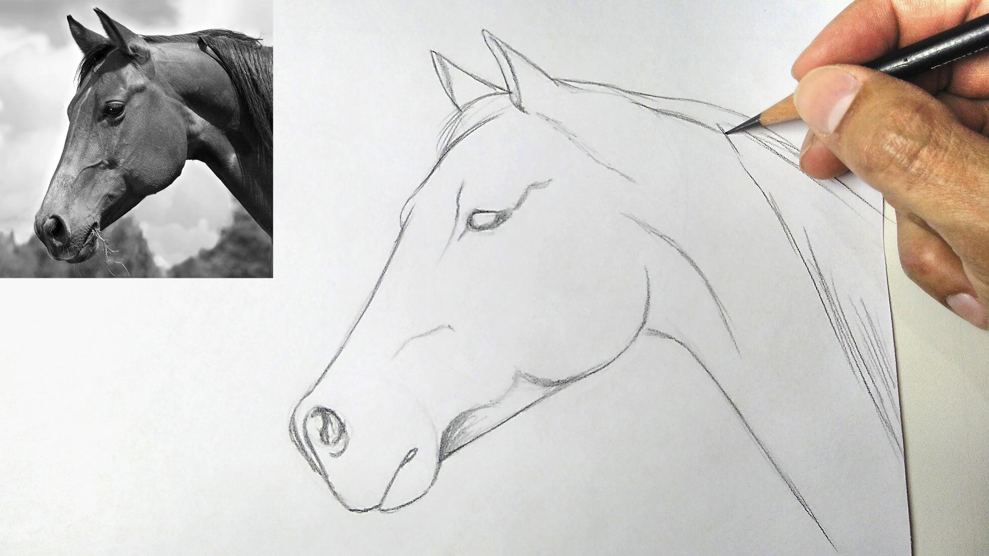 Como desenhar de forma simples